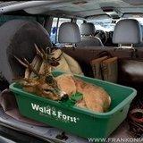 Wildbak Wald & Forst_11