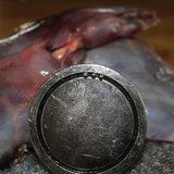 Hagelmagneet / Jachtmagneet die staalhagel op spoort_11