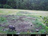 Bewakingscamera S358 SPROMISE 12MP GPRS Foto en Video E-Mail Zend Functie._11