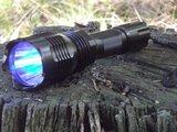 WAIDMANN 300 en 330 Lumen LED jacht zaklamp 2020_11
