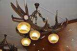 Hanglamp Edelhert driehoek 4 lampen_11
