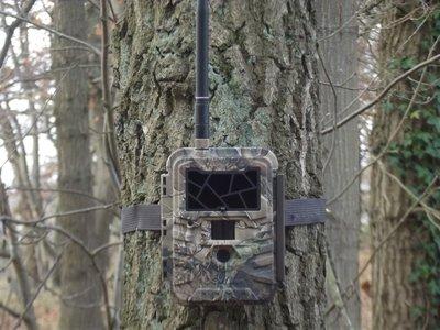 Wildcamera UM595-3G, Black Ir Led's, Zeer snelle verzendfunctie via 3G netwerk