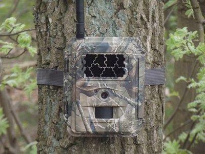 Bewakingscamera S328 SPROMISE met GPRS voor verzending van foto's op uw email