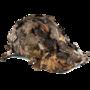 3D-camo-pet-met-bladeren-JACK-PYKE