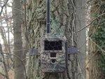 Wildcamera-UM595-3G-Black-Ir-Leds-Zeer-snelle-verzendfunctie-via-3G-netwerk