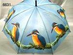 IJSVOGEL-paraplu